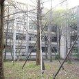 京都大学5