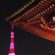 東京タワー pink version