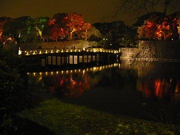 和田倉橋前のライトアップ