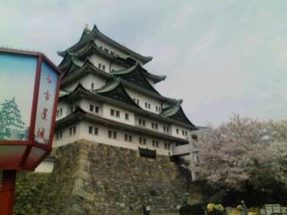 名古屋城に来ています。