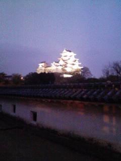 姫路城夜桜会。