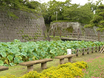 Tsurumaru1