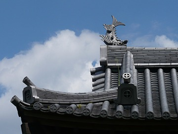 Miyakonojshimadzu