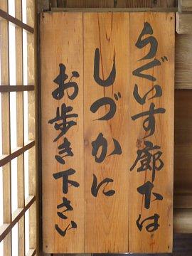 Yamanashi023