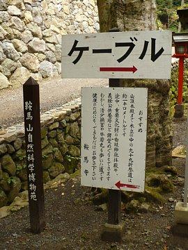 Kurama005