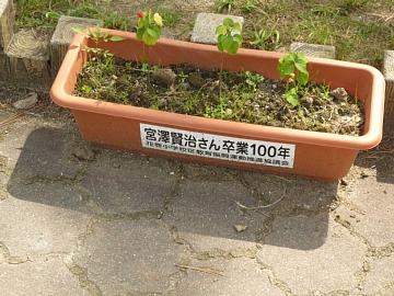 P1070879