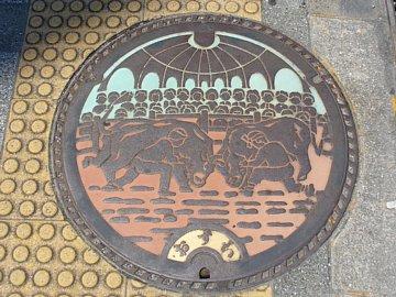 Uwajima_manhole2