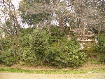 Yaguradai